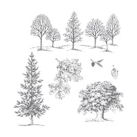 Lovely As A Tree Clear-Mount Stamp Set